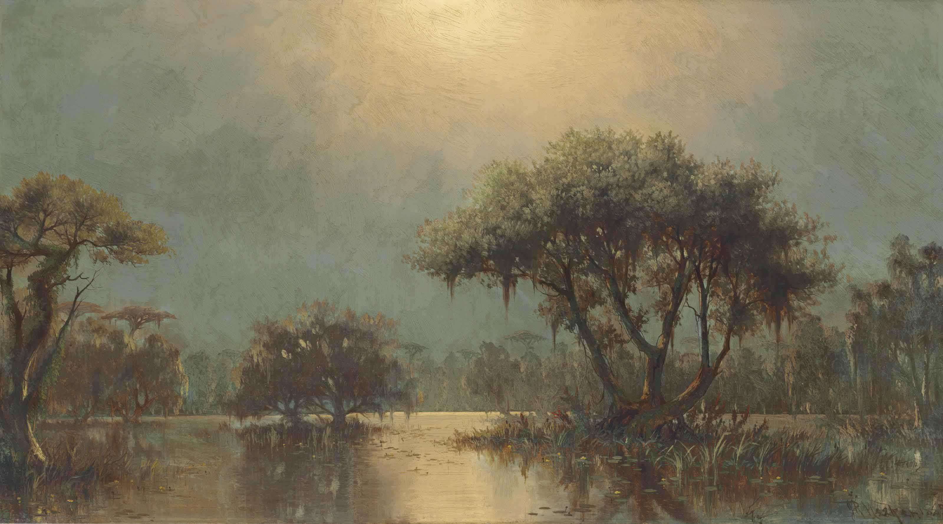 Bayou Landscape
