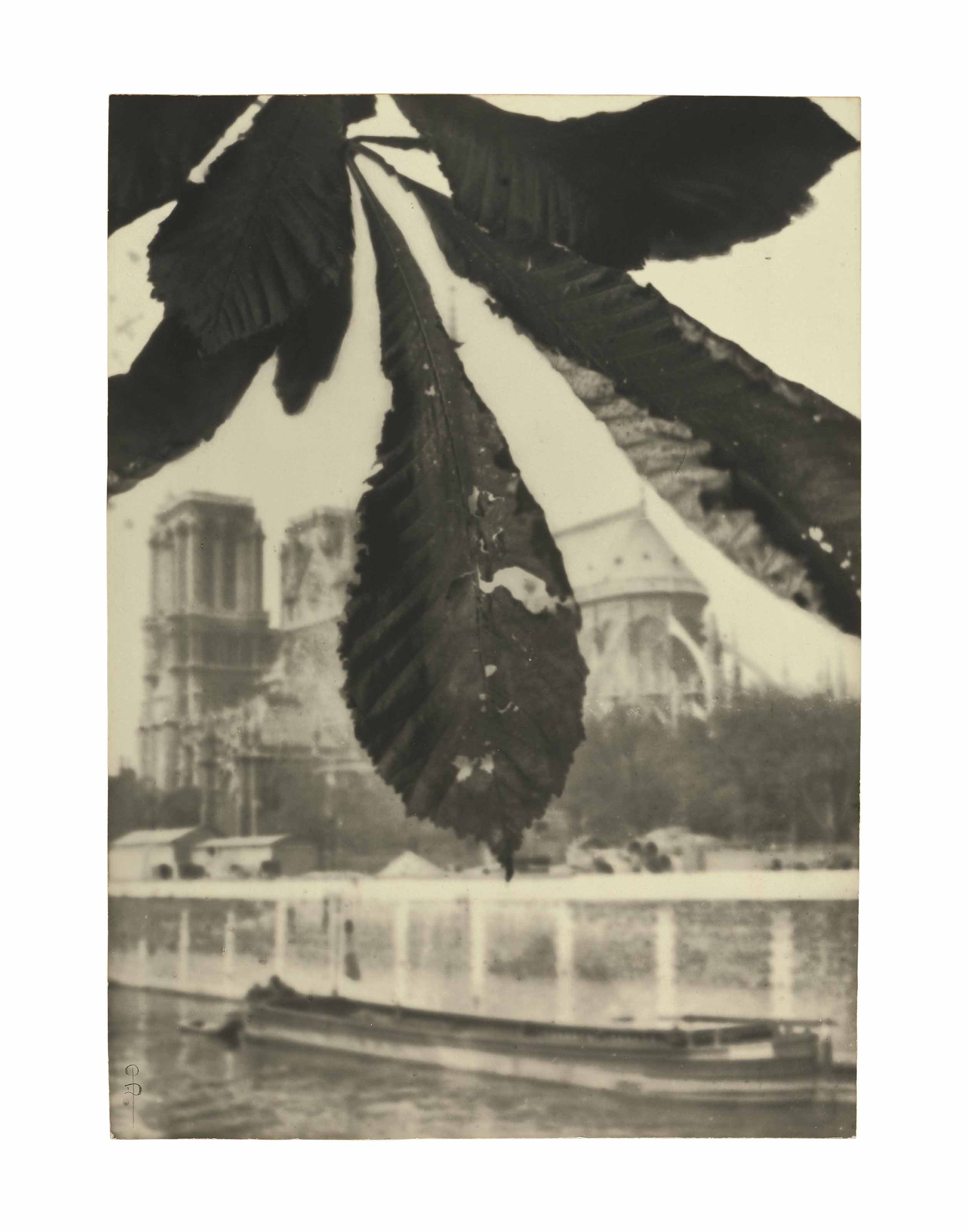 Notre Dame de Paris, 1908