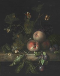 Peaches, grapes, and plums with a dragonfly, snail, caterpillar, moths, and other insects on a stone ledge