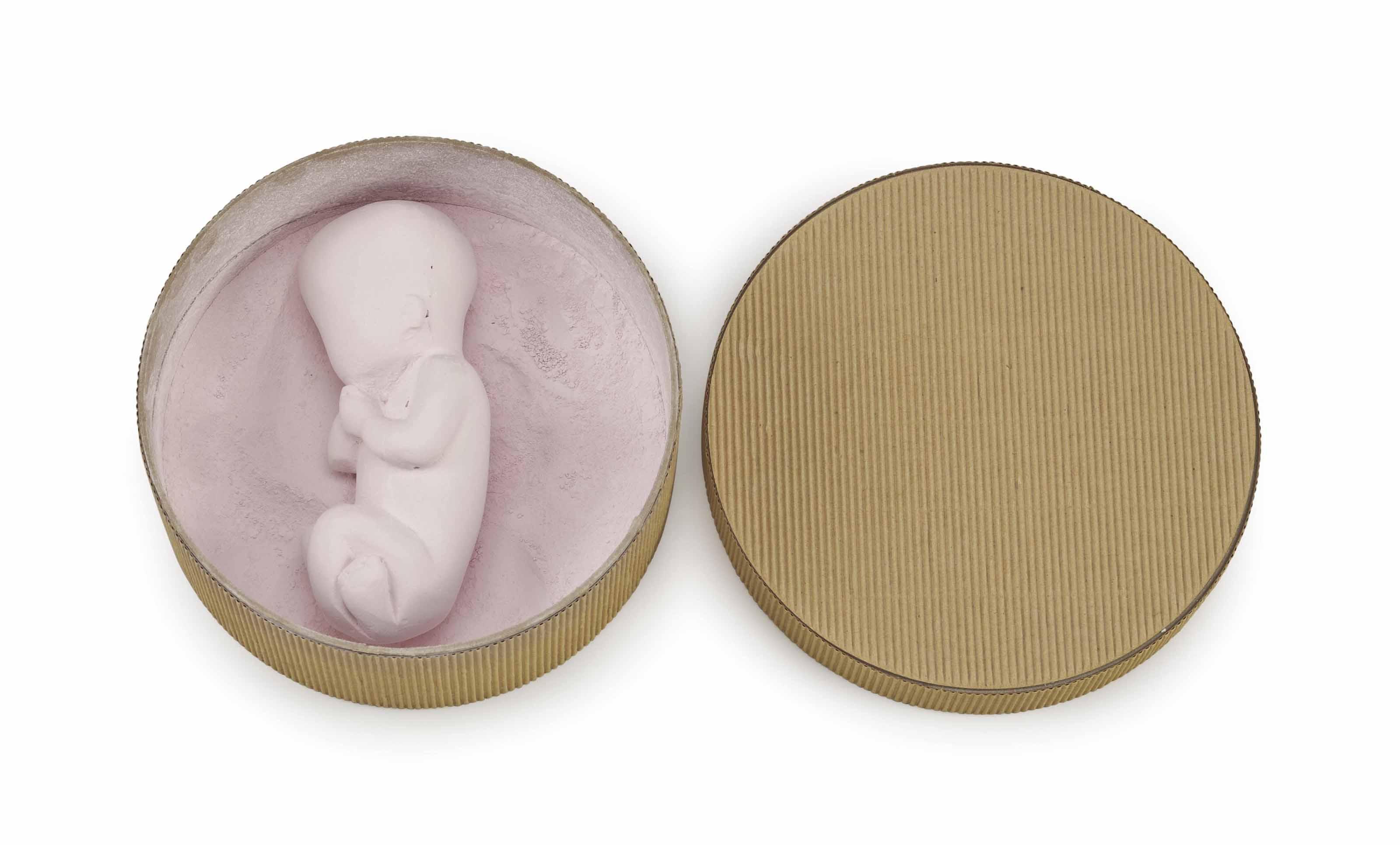 Pink Fetus