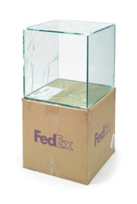 FedEx ® Large Kraft Box © 2005 FEDEX 330508 REV 10/05 SSCC, International Priority, Los Angeles-Brussels trk#865282057964, October 27-30, 2008, Priority Overnight, Los Angeles-New York trk#794583197877, March 28-29, 2011