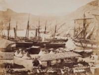 Cattle pier, Cossak Bay, Balaklava, 1856