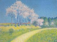 Chemin en printemps