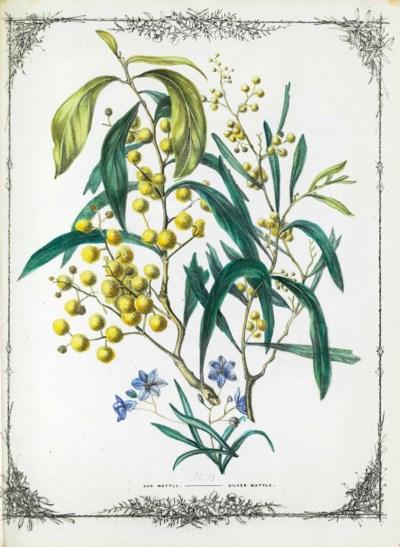 [DE MOLE, Fanny Elizabeth (183