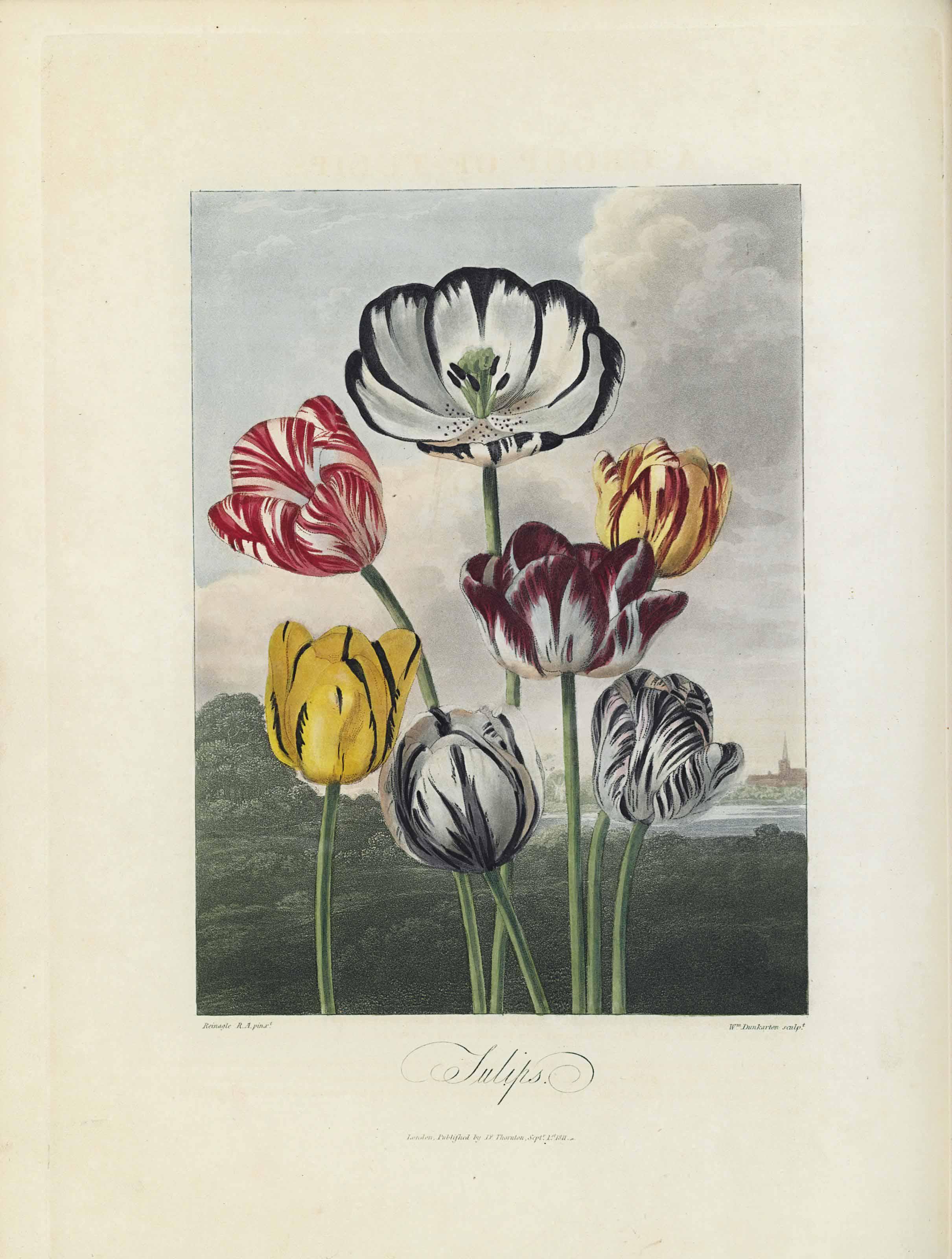 THORNTON, Robert John (ca 1768