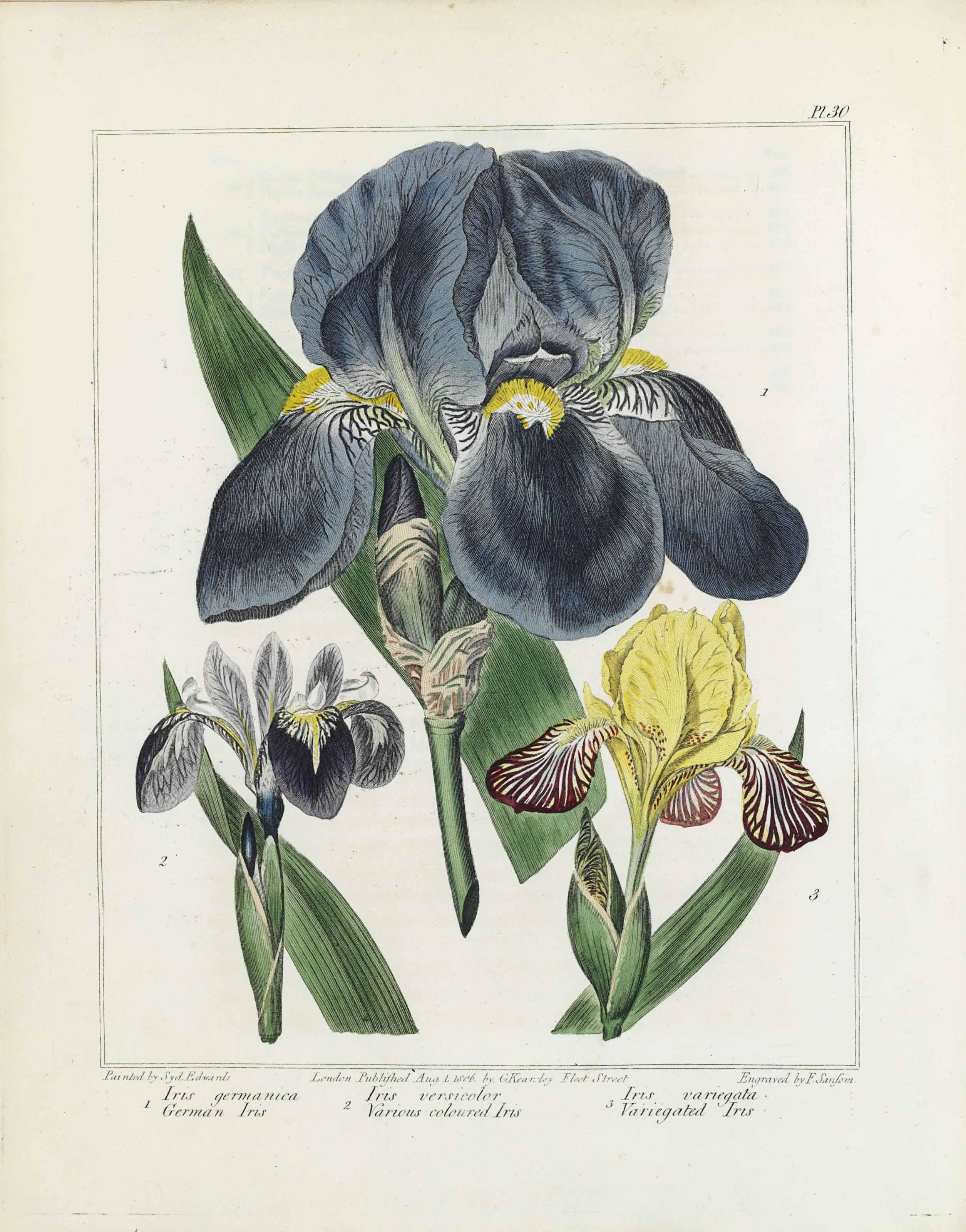[DICKSON, R.W.] The New Botani