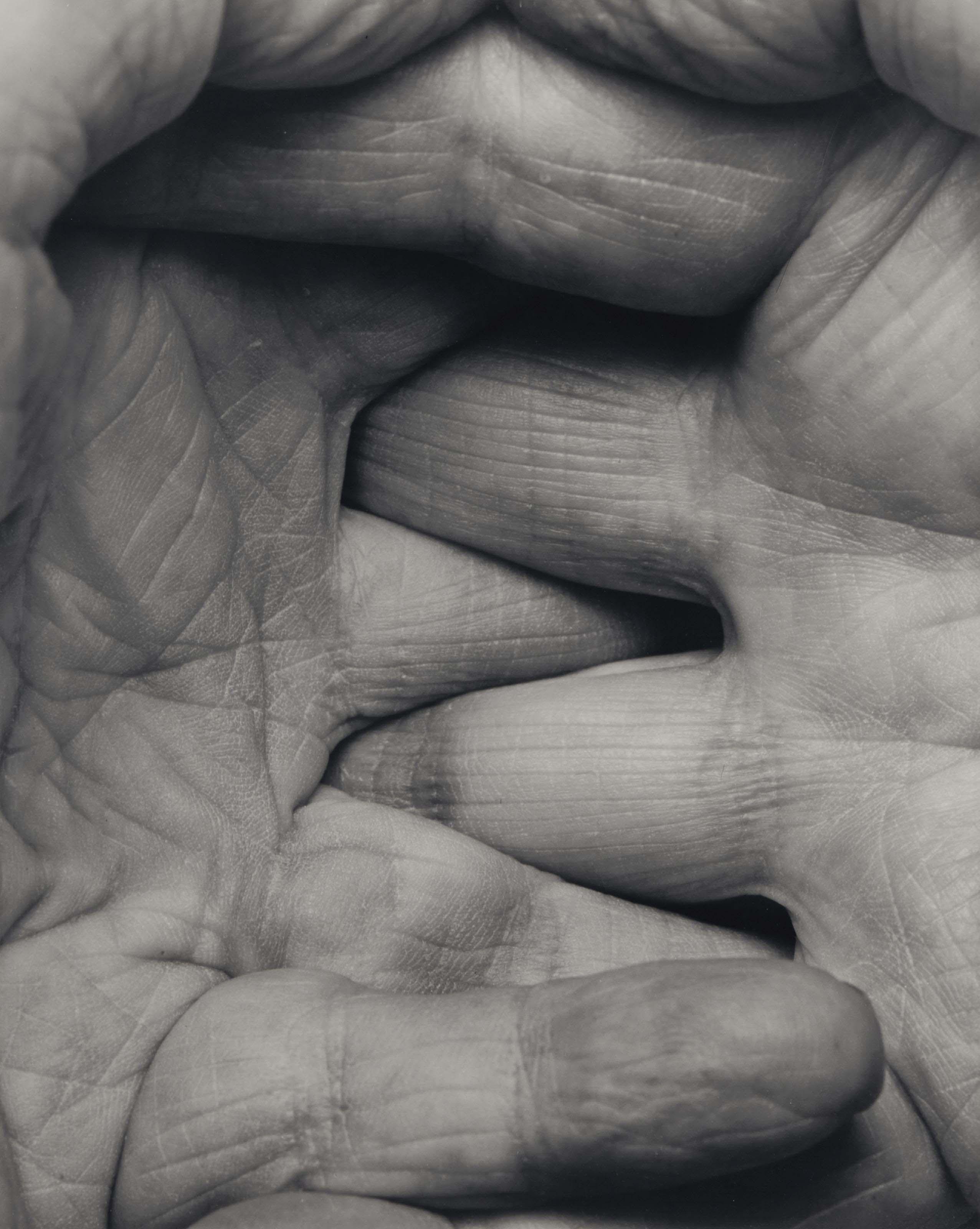 SP 40 99 Interlocking Fingers n. 10, 1999
