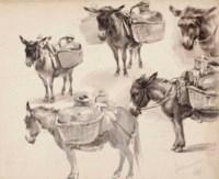 Studies of mules