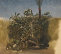 Study of a cactus, and trees behind