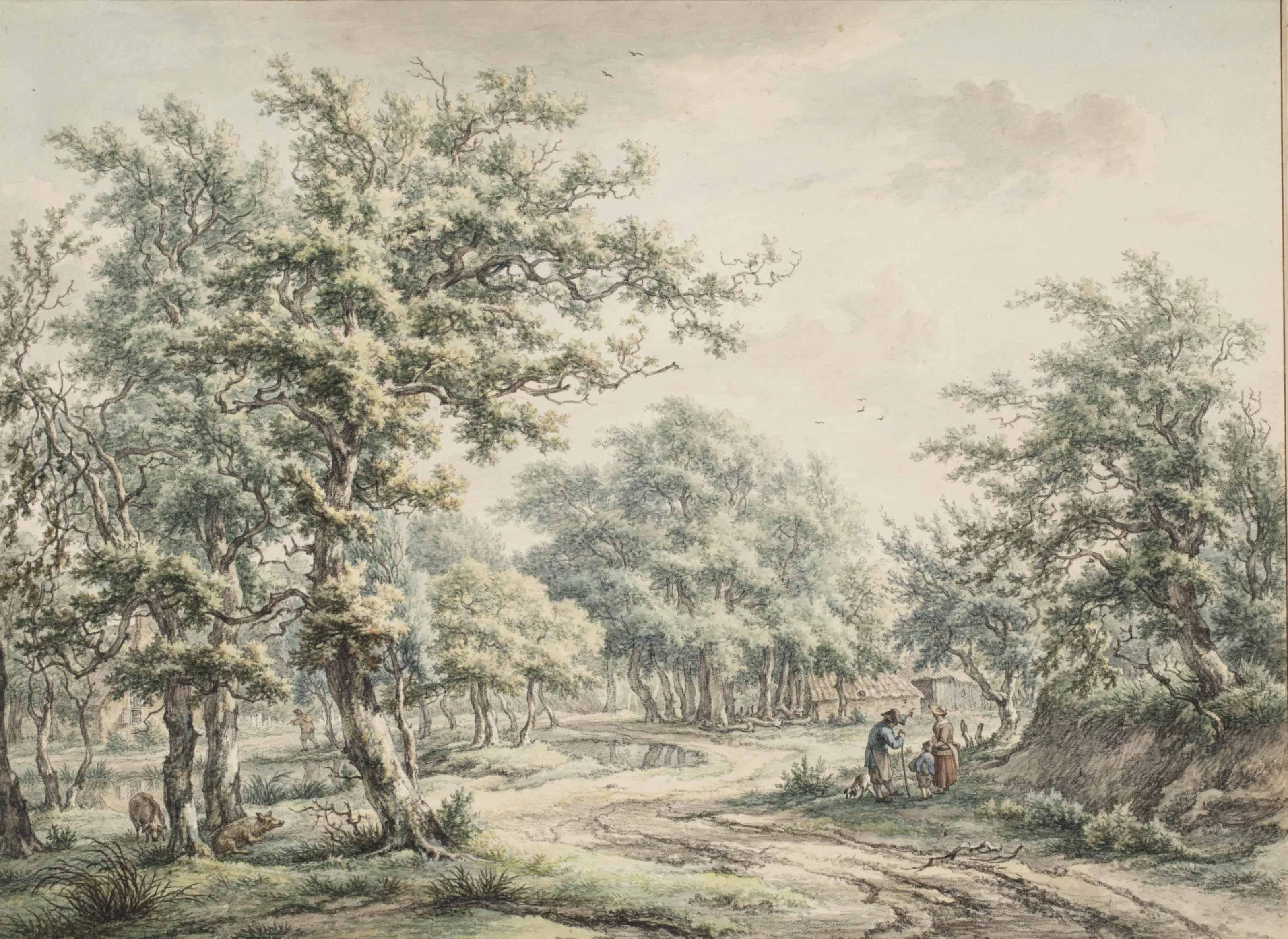 A wooded landscape near Eext