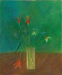 Aladdin Tulips