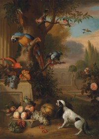 A blue and gold macaw, an African grey parrot, a parakeet and other birds, with grapes, melons, apples and a dog, in a park landscape