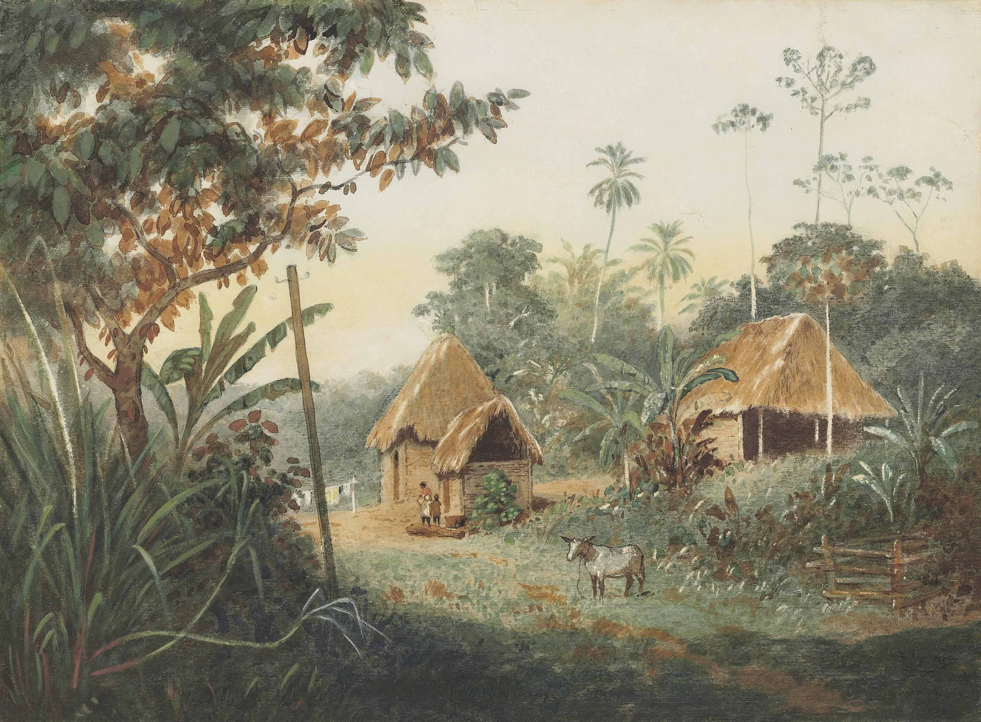 Thatched huts on a cocoa estate, Trinidad