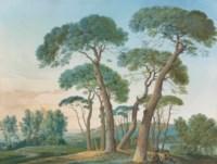 A group of stone pines near Tivoli, seen from Villa Adriana