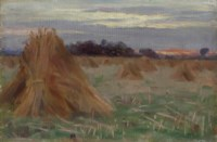 A Sussex Cornfield - Evening - near Chichester