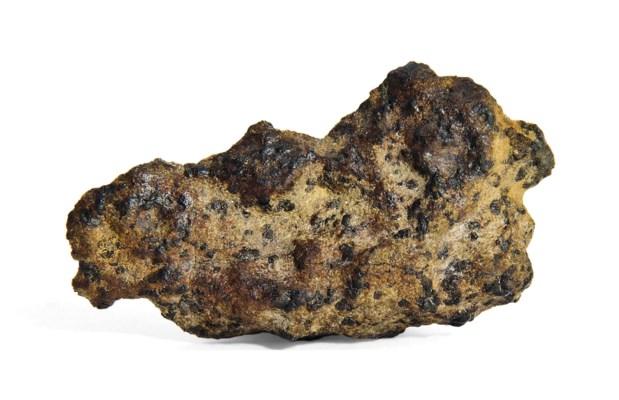 A Martian Meteorite