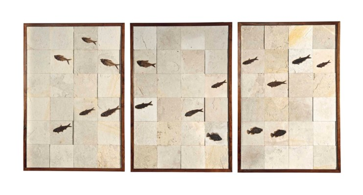 A TRIPTYCH OF FOSSIL FISH TILE