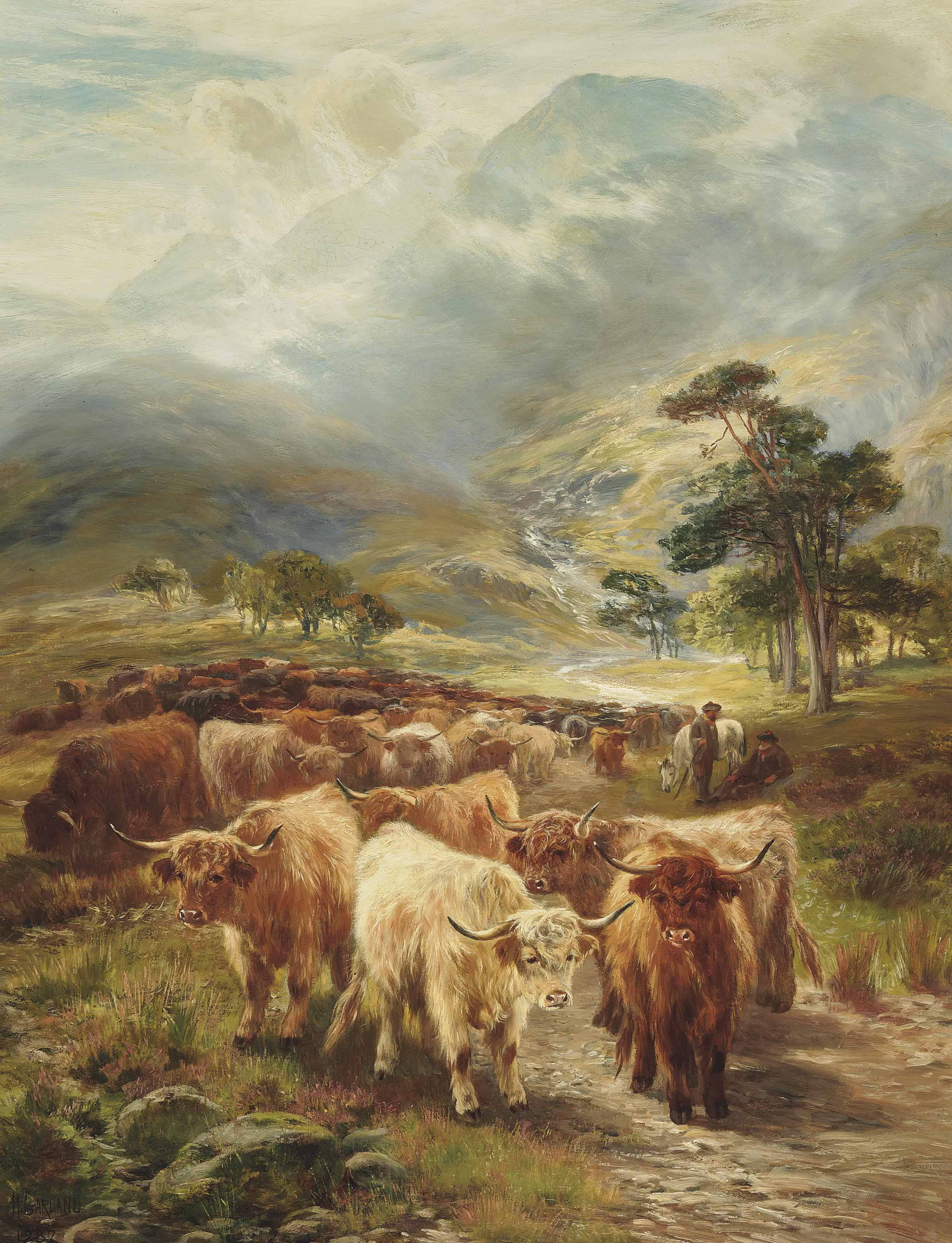 Highland drove resting near Ballachulish, Argyllshire