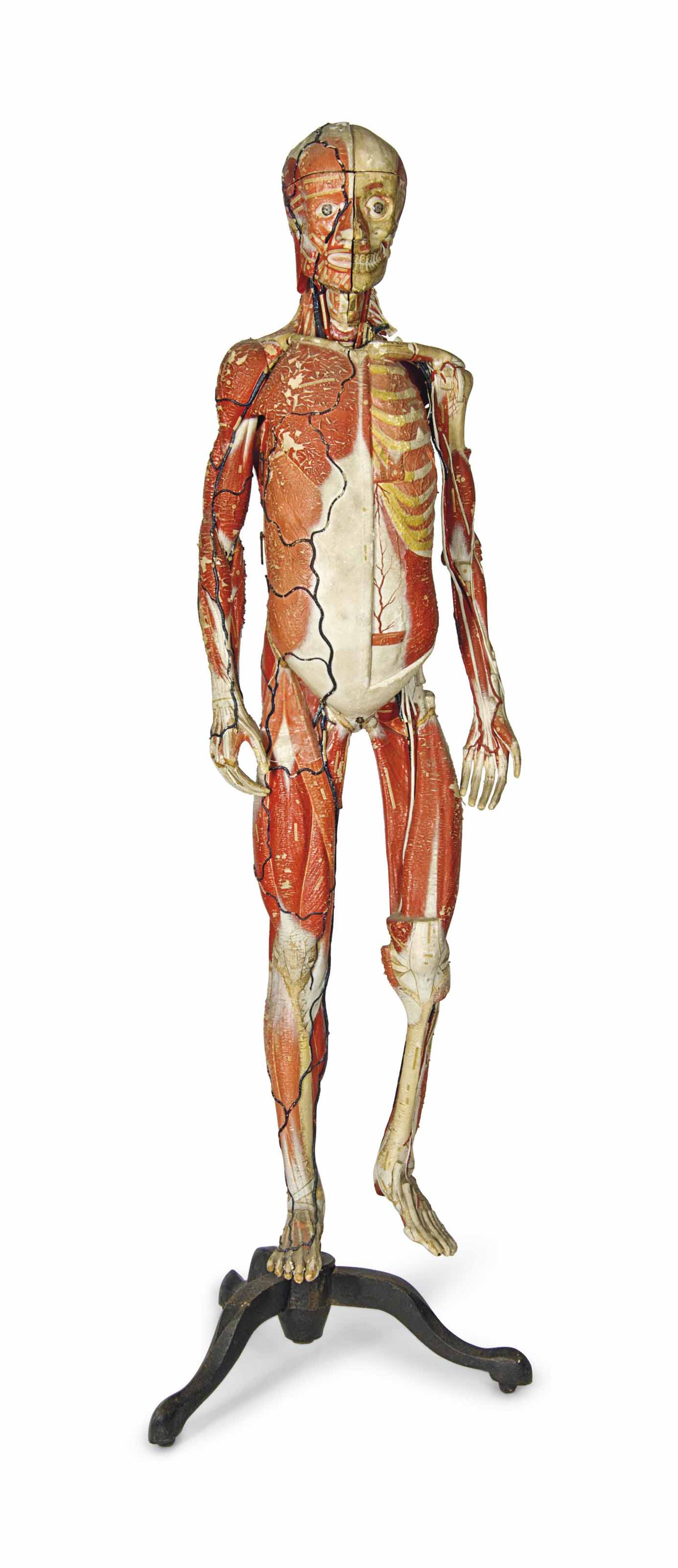 A FRENCH POLYCHROME DECORATED ANATOMIE CLASTIQUE OF A HUMAN FIGURE