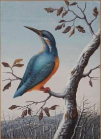 A kingfisher