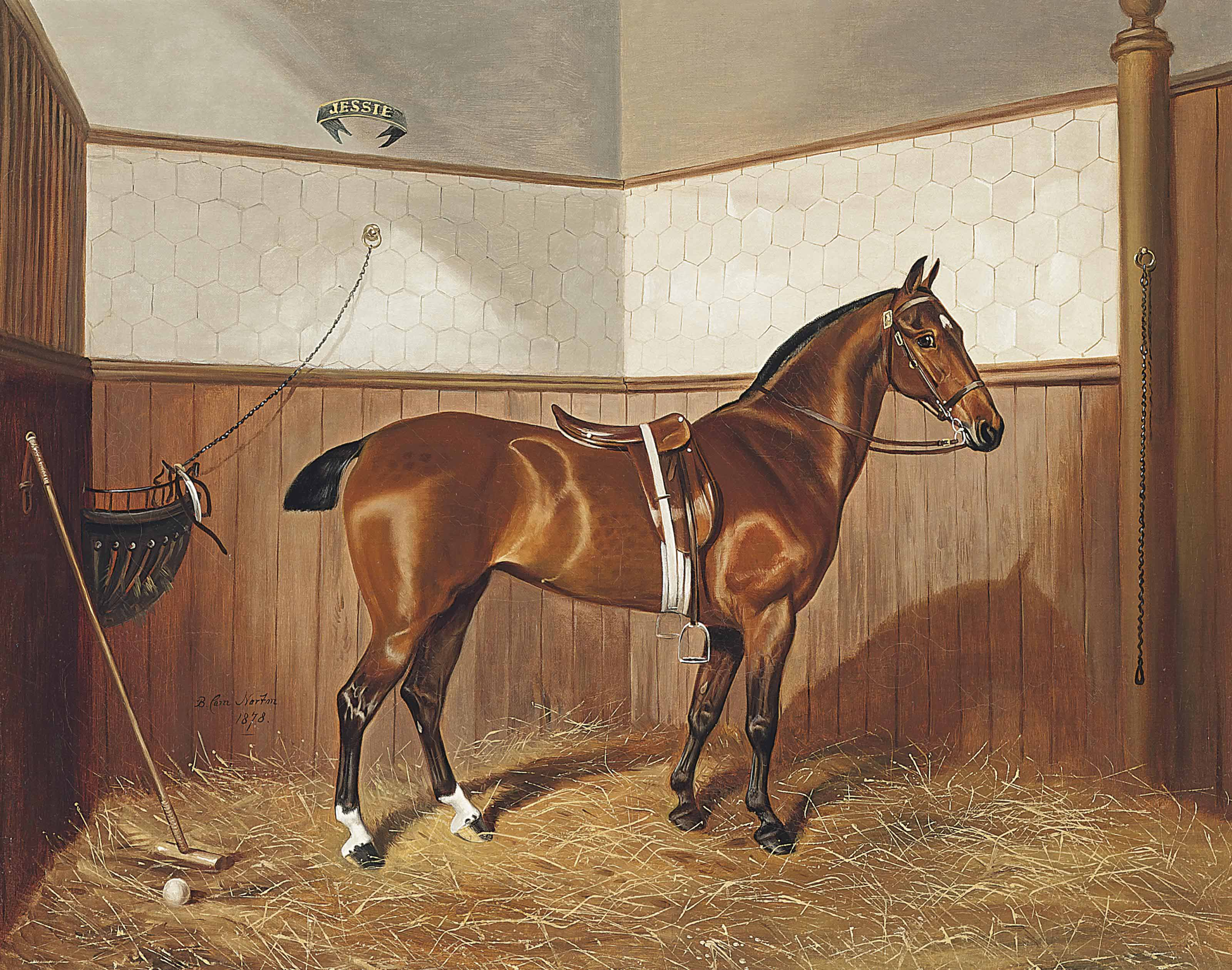 Jessie the polo pony