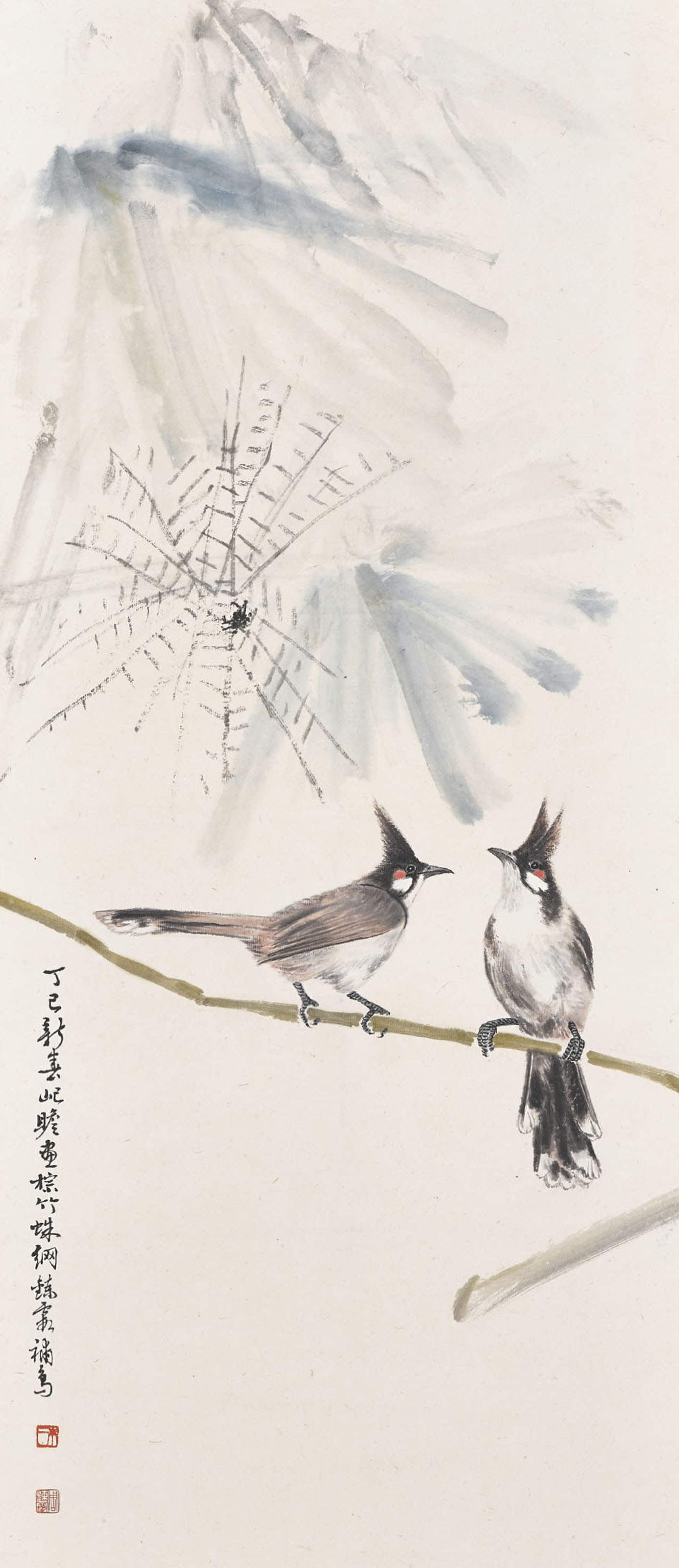Birds and Spider