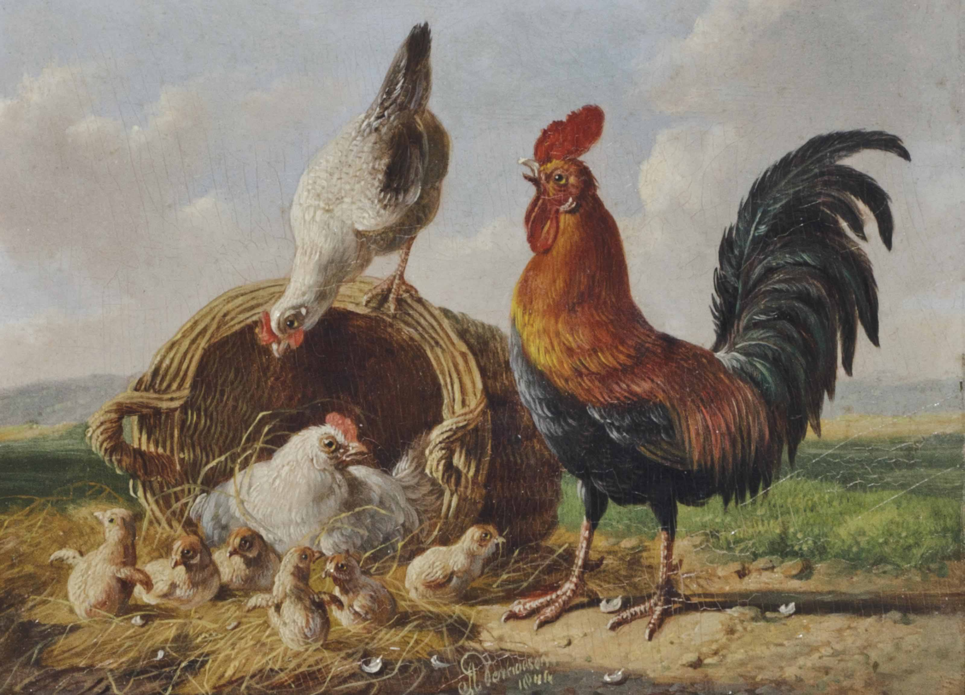 Rooster with Hens and Chicks