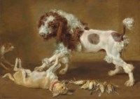 Three dogs playing, with songbirds on the floor