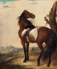 Colonel William Fitch's Horse in a landscape