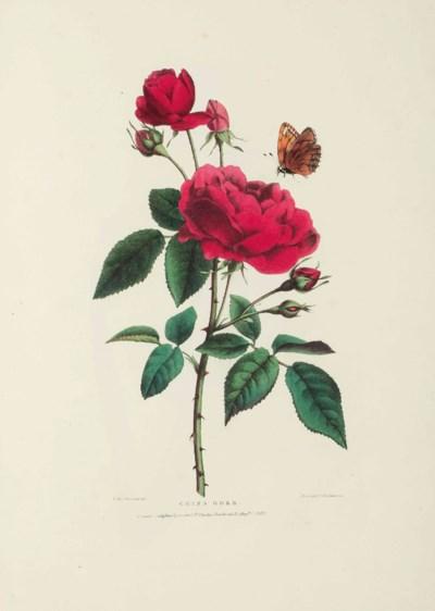 BARTHOLOMEW, Valentine (1799-1