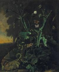 Nature morte aux chardons et aux papillons