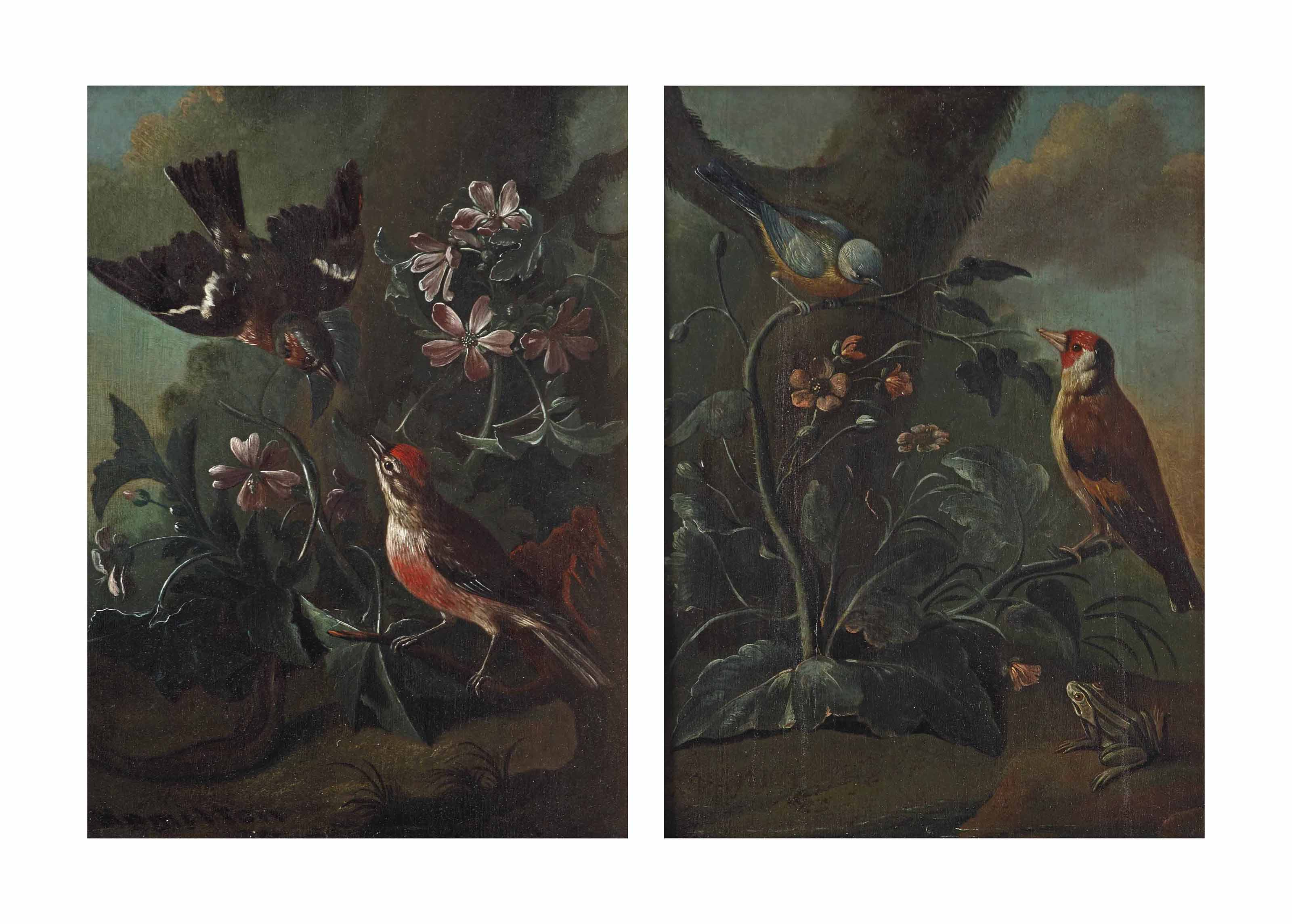 A forest floor with two finches in a bed of flowers; and A forest floor with a finch and a small bird with a frog