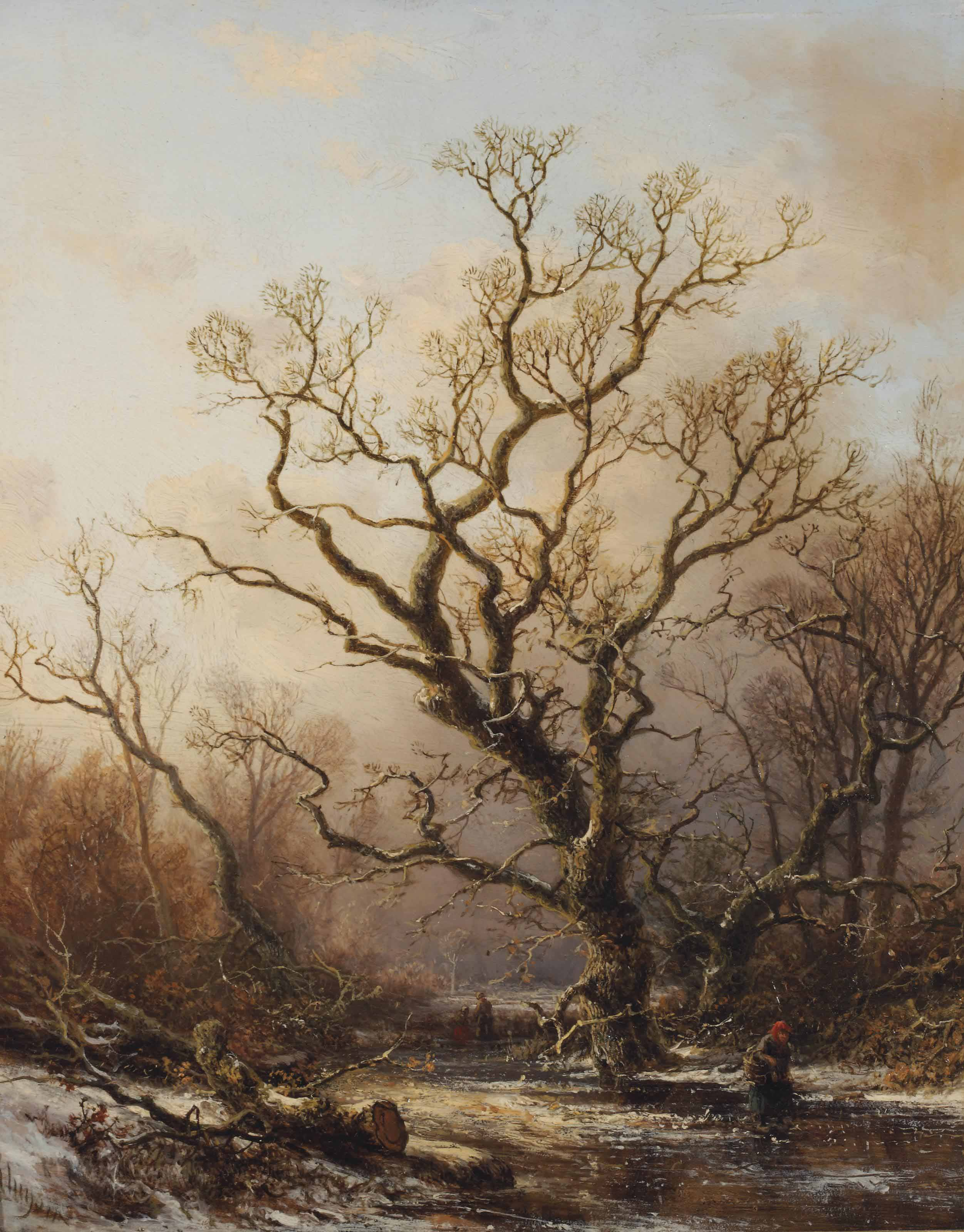 A wooded landscape in winter