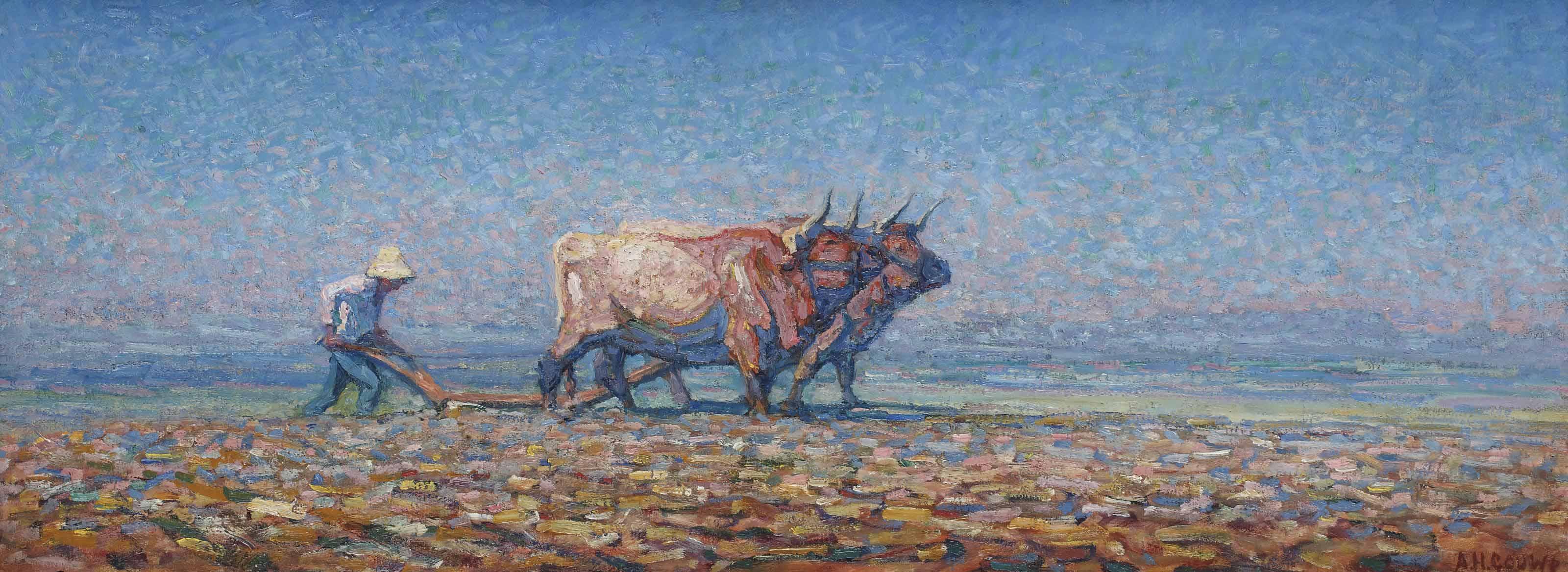 Ploughing farmer