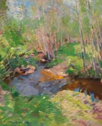 Woodland brook