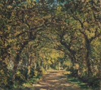 An Oak Avenue, Knaresborough