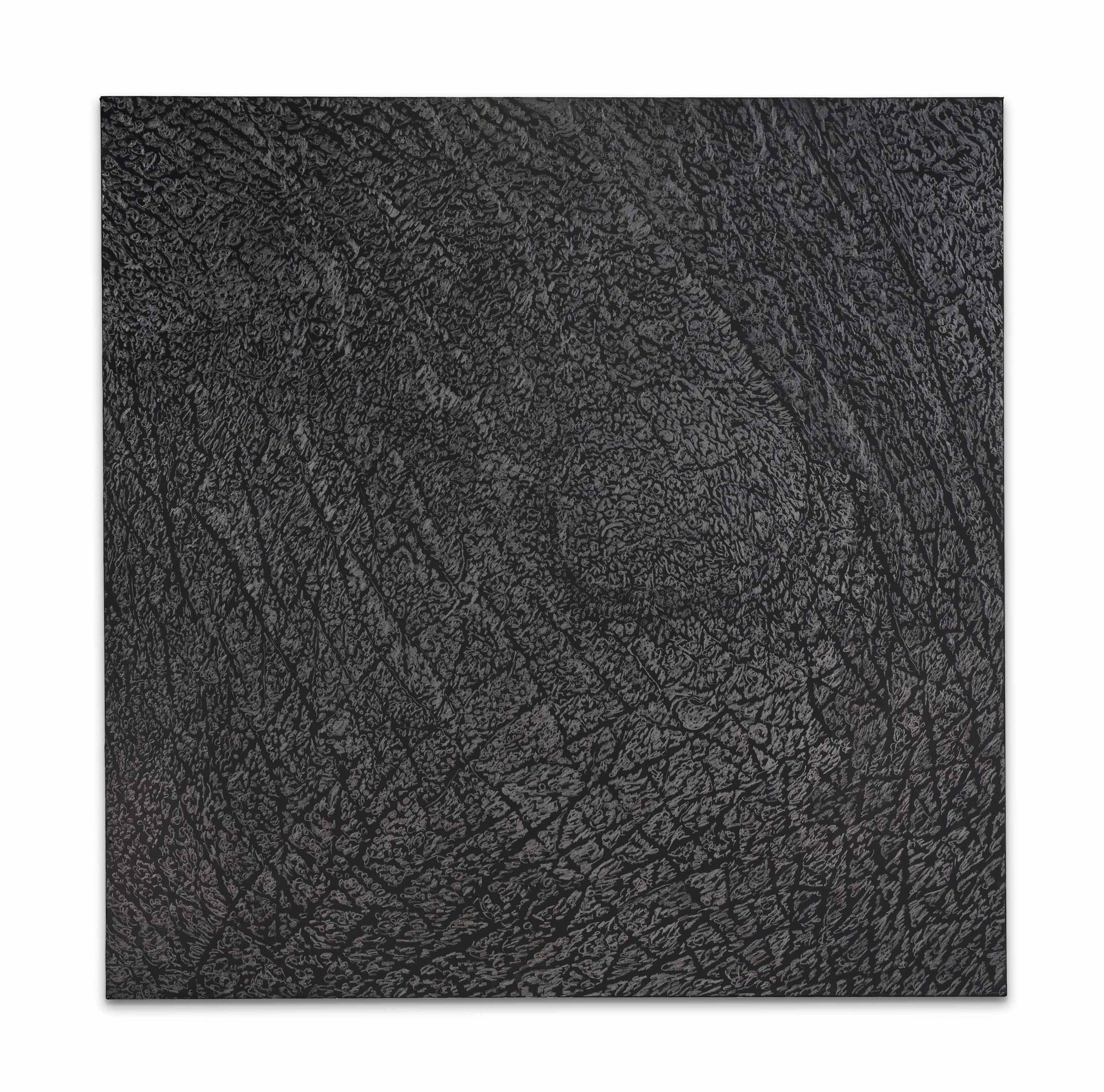 Pelle di grafite - riflesso di alurgite (Skin of graphite - reflection of alurgite)