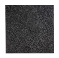 Pelle di grafite - riflesso di alurgite (Skin of graphite - reflection of alurgite)