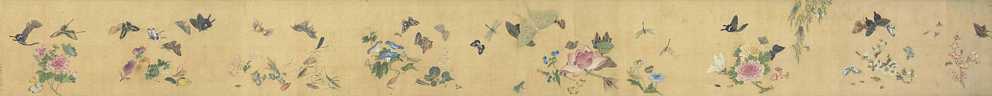 FLOWER, BUTTERFLIES AND INSECT