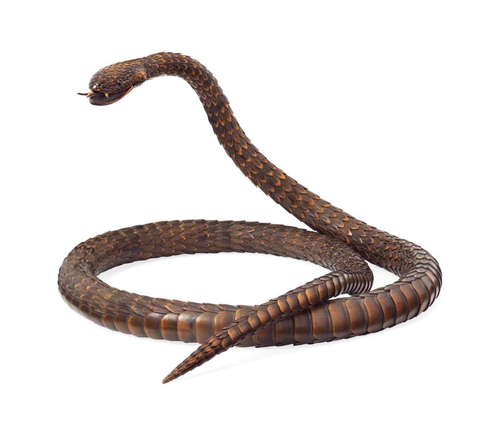 0e049a3f487a A Wood Articulated Model of a Snake
