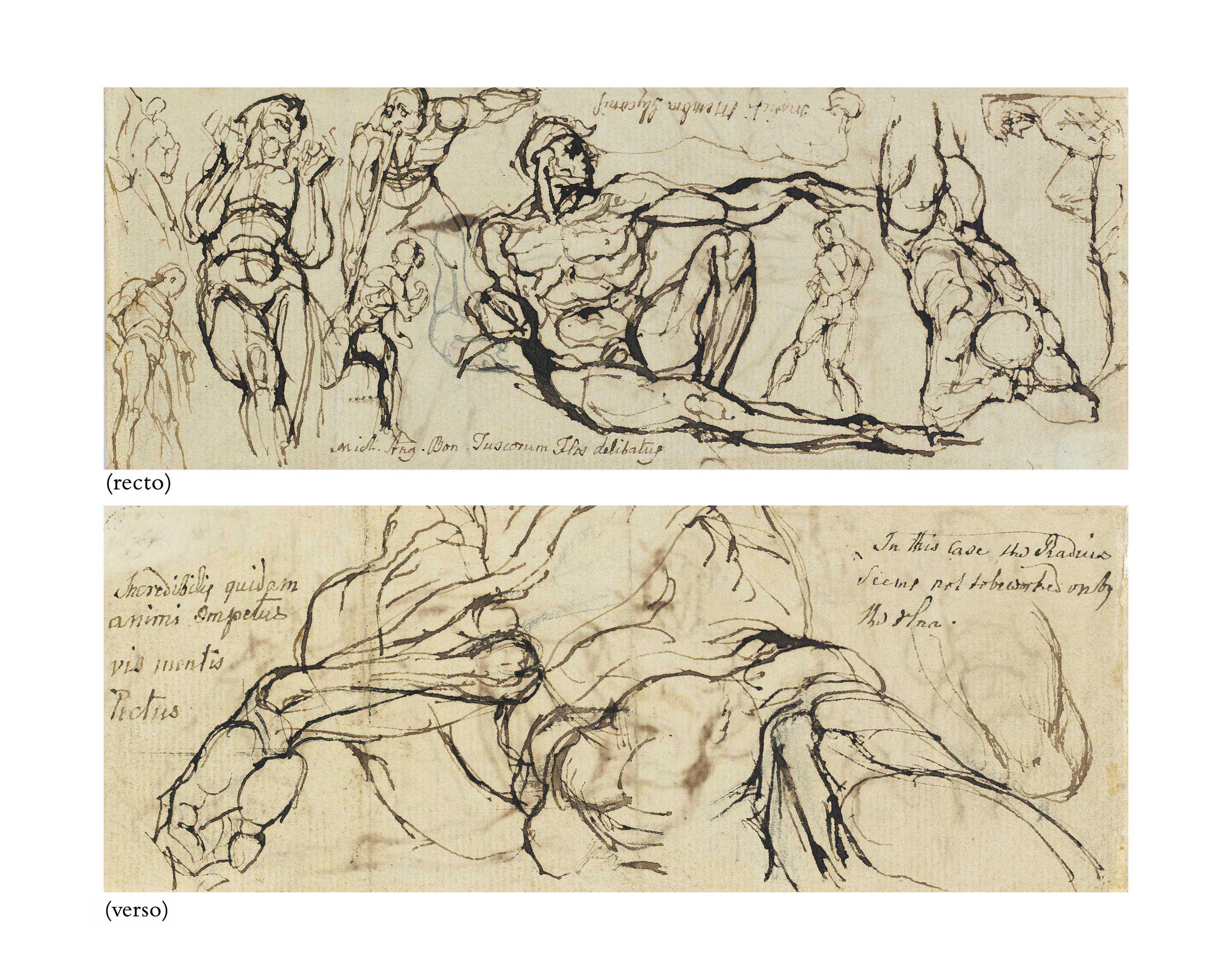 Studies of figures after Michelangelo's Sistine Ceiling