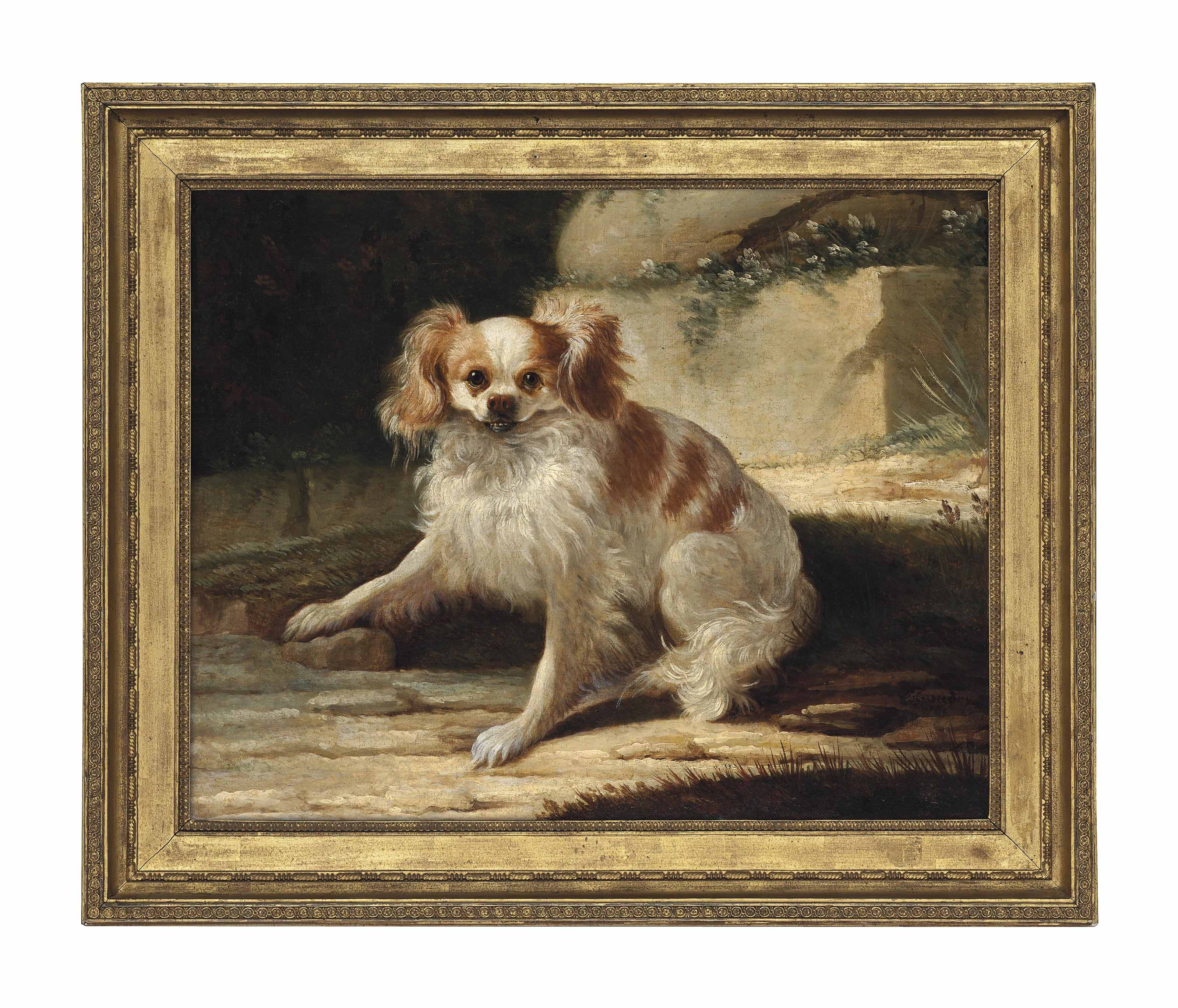 A brown and white Spaniel in a landscape