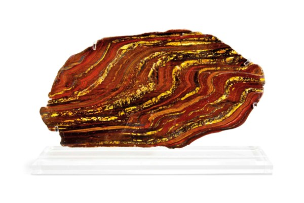 A SLICE OF TIGER IRON