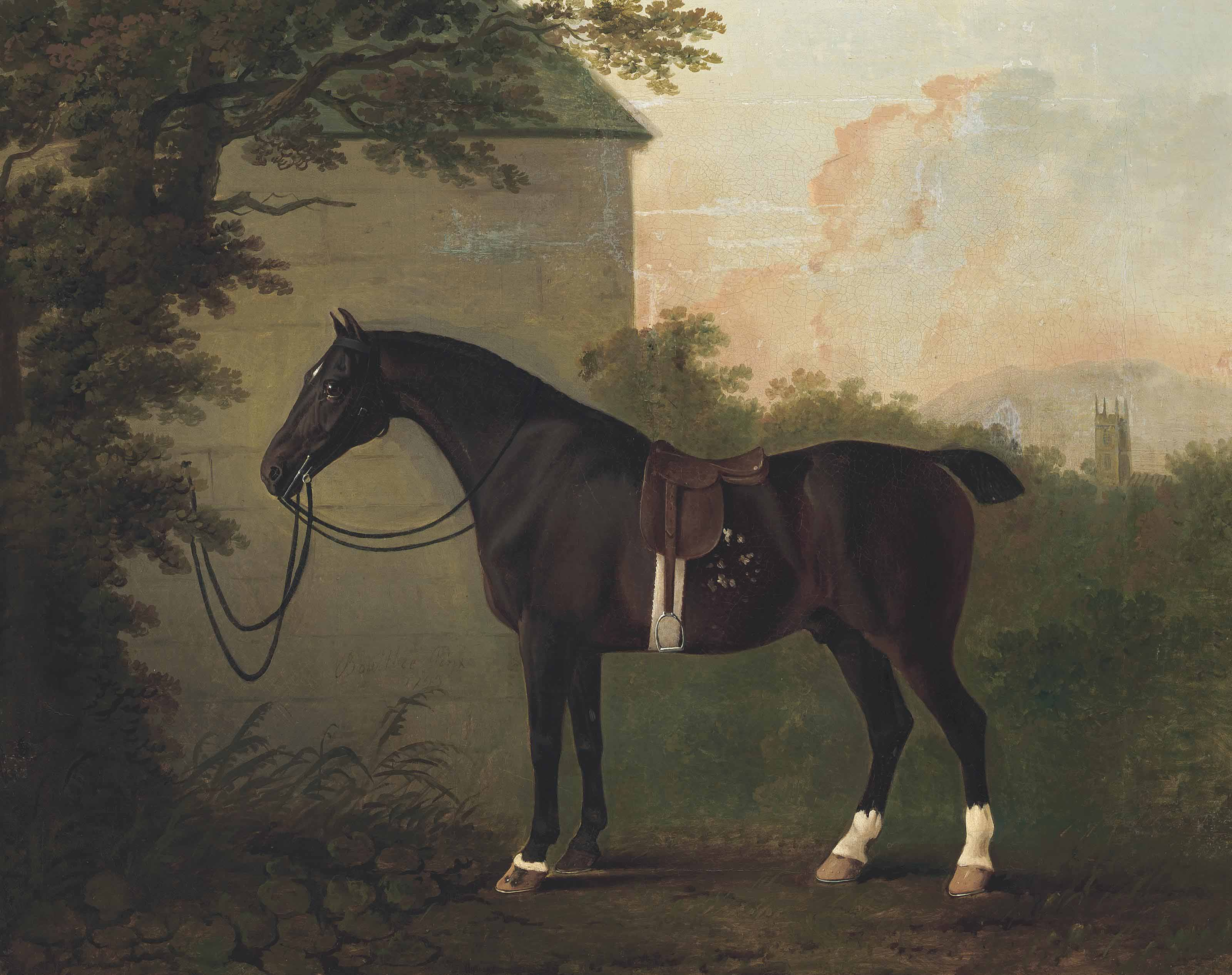 A saddled bay hunter by a stable wall