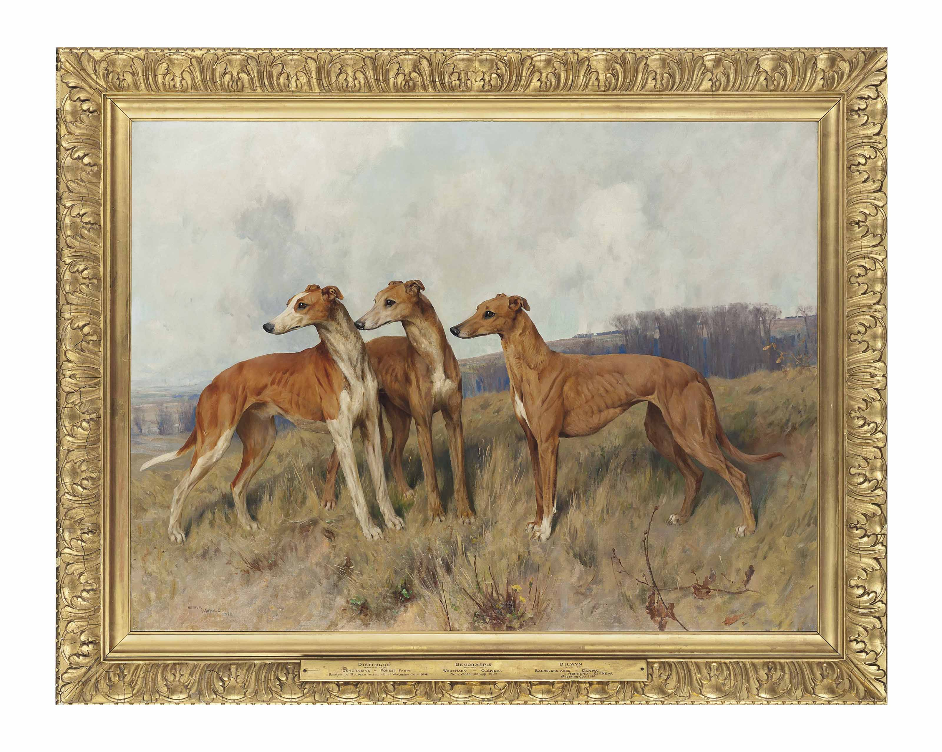 Colonel J. Dennis's greyhounds Distingue, Dendraspis and Dilwyn