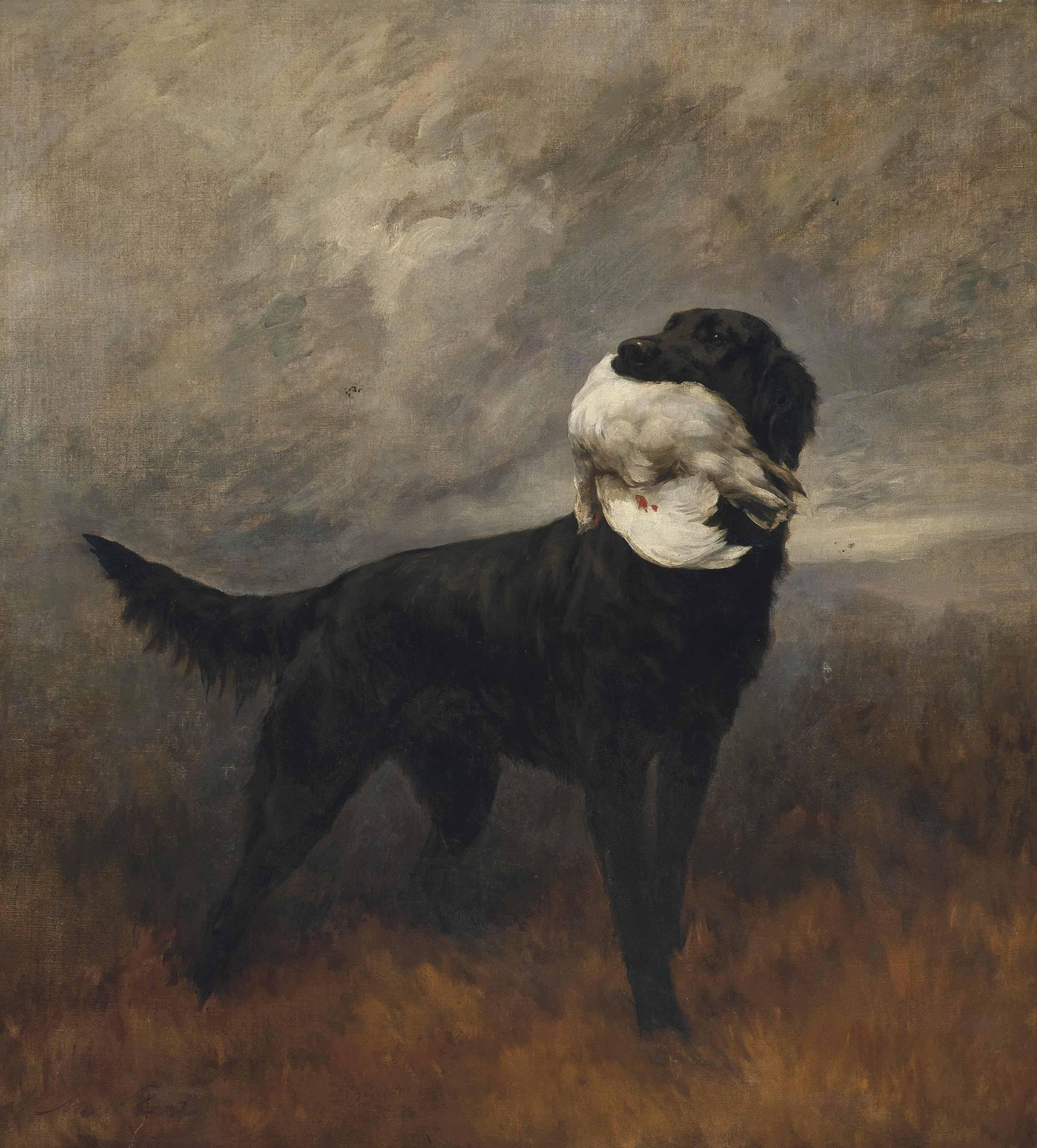 A black retriever in an extensive mountainous landscape