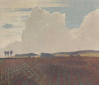 Field and thunderhead