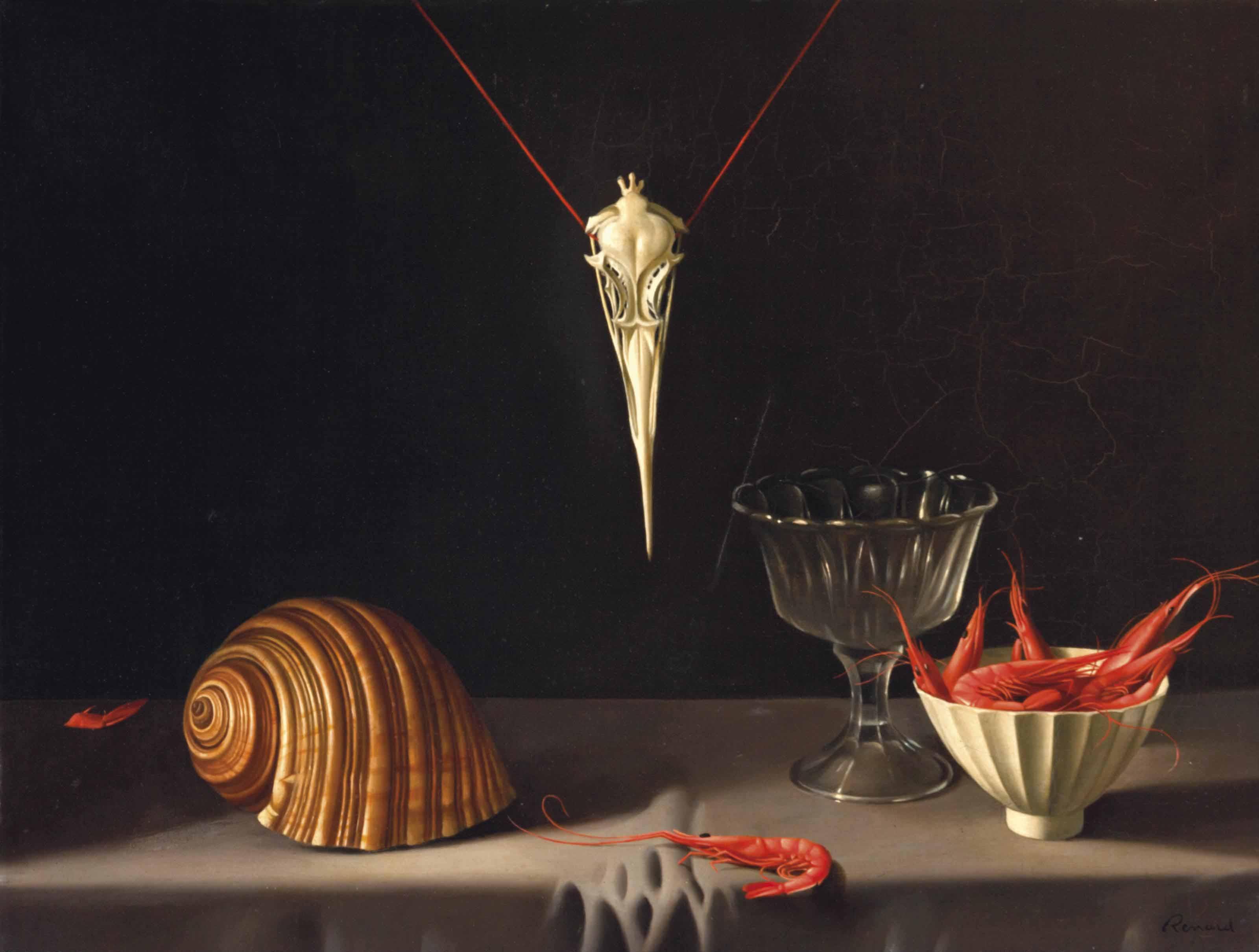 Coquillage, Crevettes et Crâne d'Oiseau