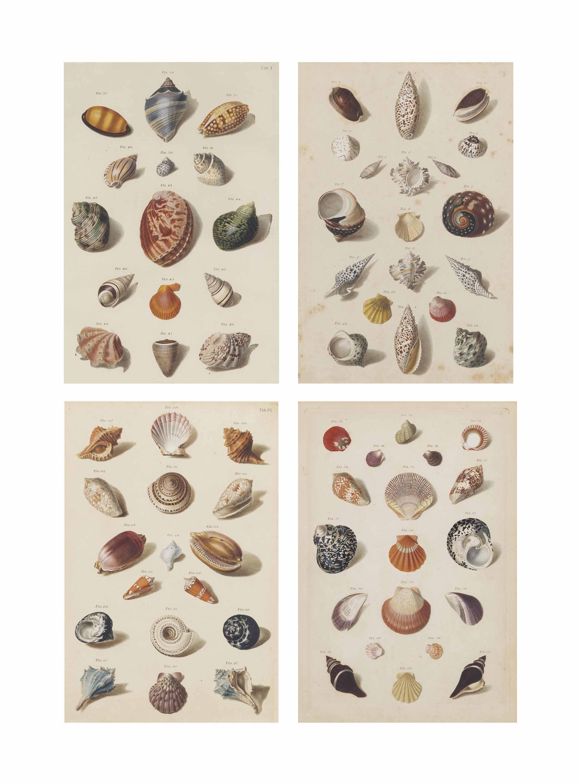 FRANZ MICHAEL REGENFUSS (1712-