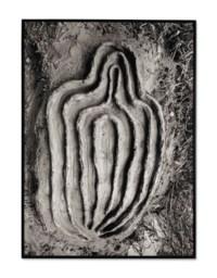 La Vivificación de la Carne: El Laberinto de Venus Series (The Vivification of the Flesh: Labyrinth of Venus Series)